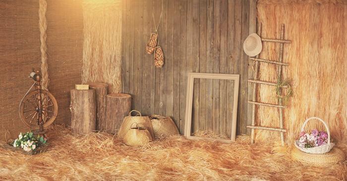 Деревенская фотостудия в спб
